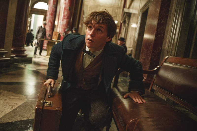 CinéCritique: Fantastic Beasts and where to find them